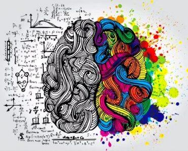 Mentor profissional cursos de humanas capa