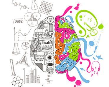 cursos de humanas - cerebro dividido entre criatividade e raciocínio logico