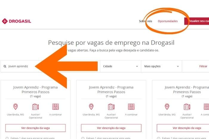 Jovem Aprendiz Brasil - Jovem Aprendiz Drogasil