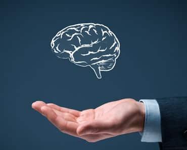 mentor profissional tipos de inteligencia
