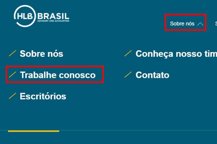 Mentor Profissional Jovem Aprendiz HLB Brasil corpo1