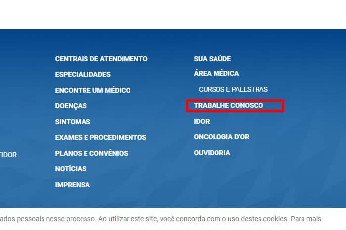 Mentor-Profissional-Jovem-Aprendiz-Rede-D'Or-São-Luiz-corpo1