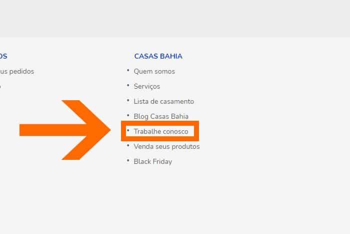 Mentor Profissional Jovem Aprendiz Casas Bahia corpo