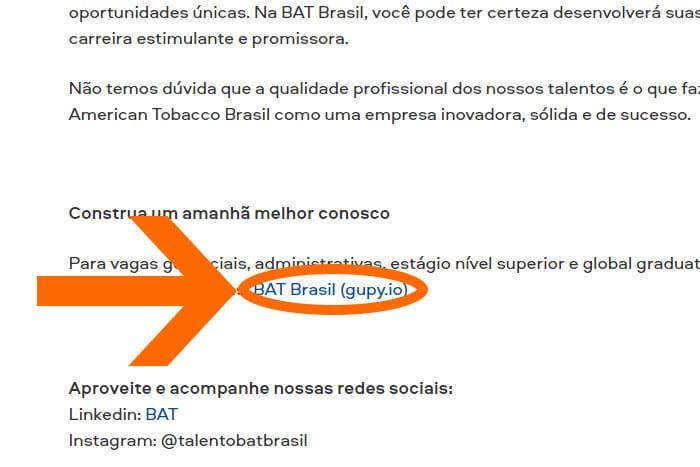 Mentor Profissional Jovem Aprendiz Bat Brasil corpo1