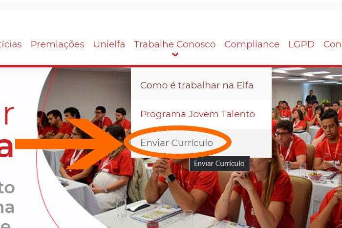 Mentor Profissional Jovem Aprendiz Grupo Elfa corpo1